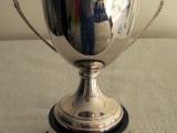 the-binbrook-cup